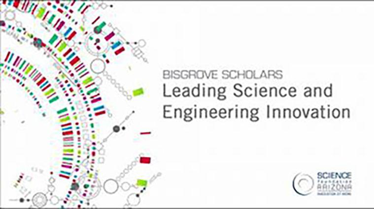 Bisgrove Scholars